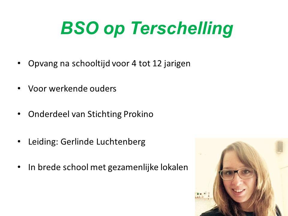 BSO op Terschelling Opvang na schooltijd voor 4 tot 12 jarigen Voor werkende ouders Onderdeel van Stichting Prokino Leiding: Gerlinde Luchtenberg In brede school met gezamenlijke lokalen