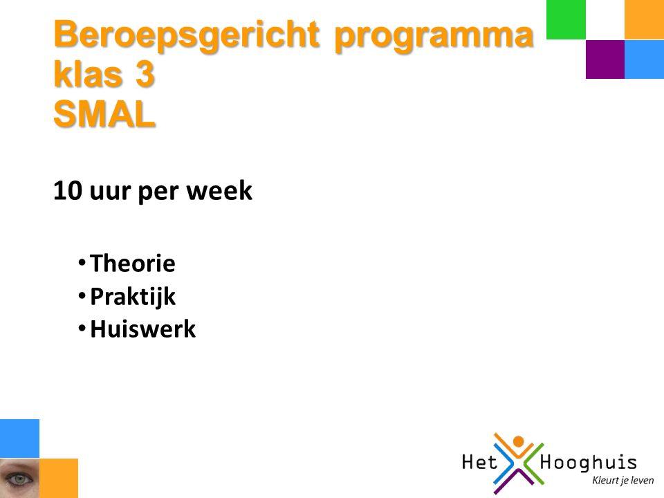 Beroepsgericht programma klas 3 SMAL 10 uur per week Theorie Praktijk Huiswerk