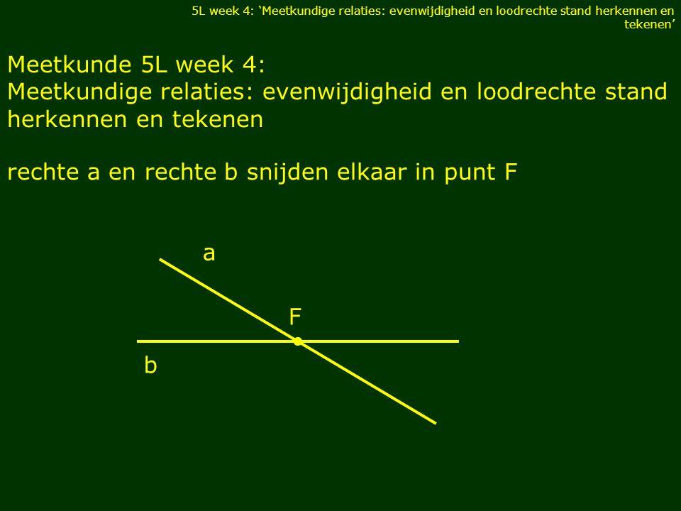 rechte c en rechte d snijden elkaar loodrecht in punt A 5L week 4: 'Meetkundige relaties: evenwijdigheid en loodrechte stand herkennen en tekenen' c A d