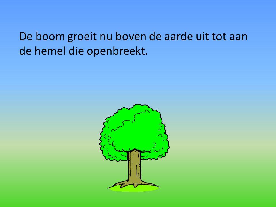 De boom groeit nu boven de aarde uit tot aan de hemel die openbreekt.