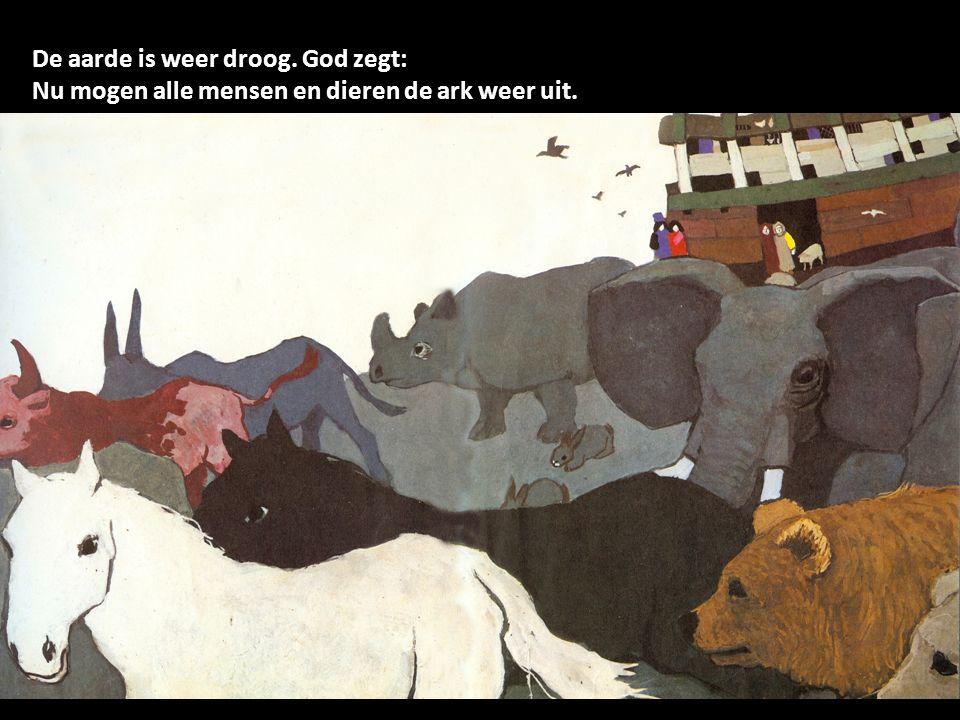 De aarde is weer droog. God zegt: Nu mogen alle mensen en dieren de ark weer uit.