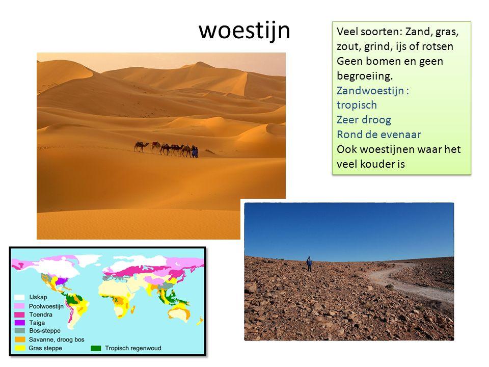 woestijn Veel soorten: Zand, gras, zout, grind, ijs of rotsen Geen bomen en geen begroeiing. Zandwoestijn : tropisch Zeer droog Rond de evenaar Ook wo