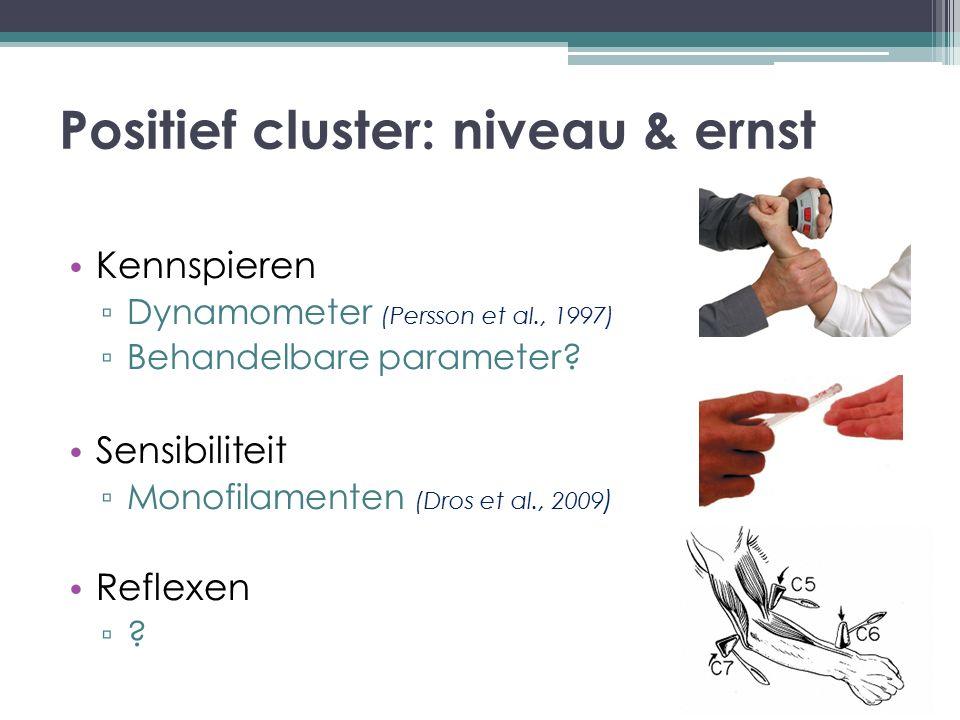 Positief cluster: niveau & ernst Kennspieren ▫ Dynamometer (Persson et al., 1997) ▫ Behandelbare parameter? Sensibiliteit ▫ Monofilamenten (Dros et al