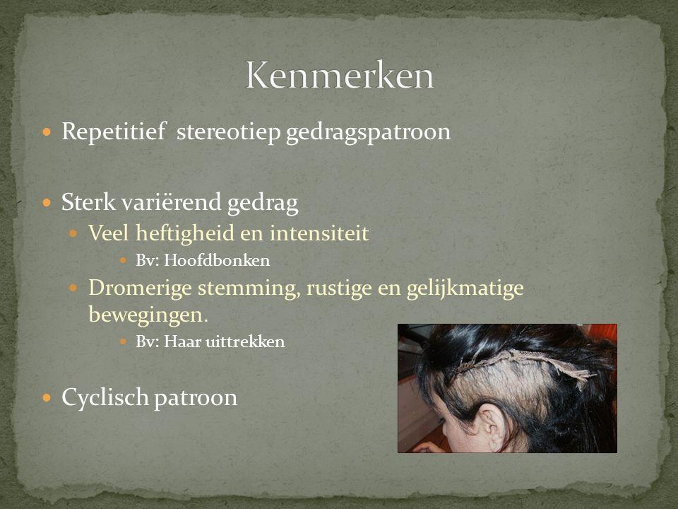 Repetitief stereotiep gedragspatroon Sterk variërend gedrag Veel heftigheid en intensiteit Bv: Hoofdbonken Dromerige stemming, rustige en gelijkmatige