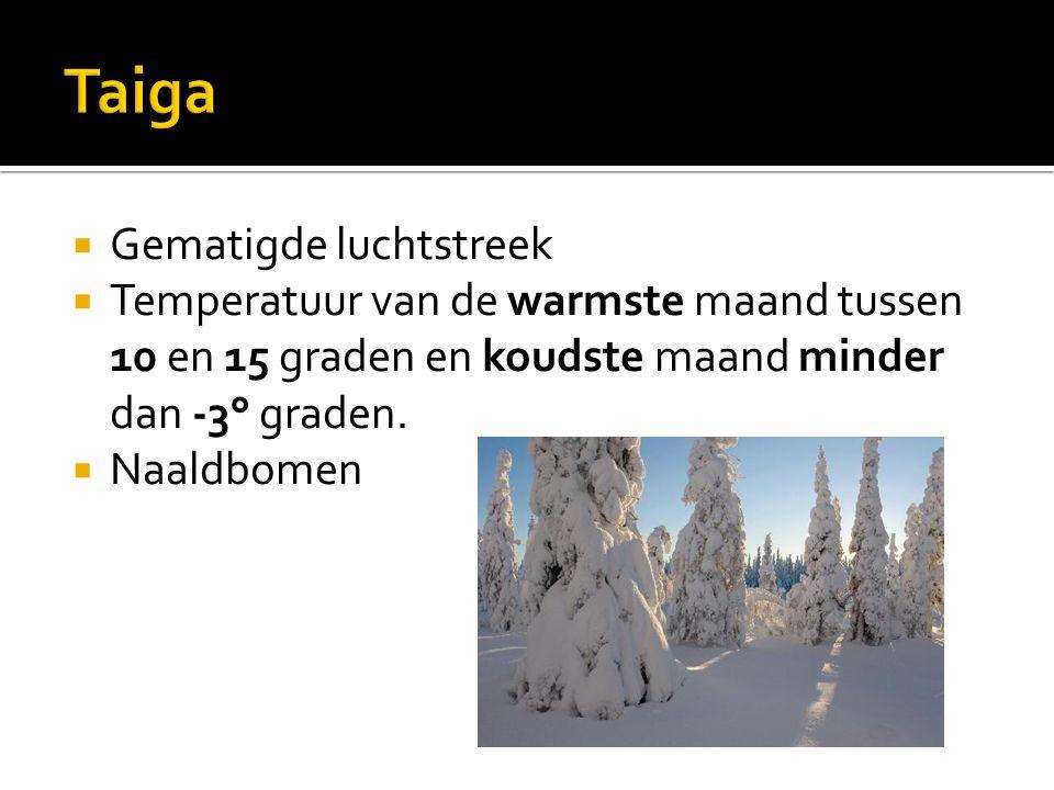  Gematigde luchtstreek  Temperatuur van de warmste maand tussen 10 en 15 graden en koudste maand minder dan -3° graden.