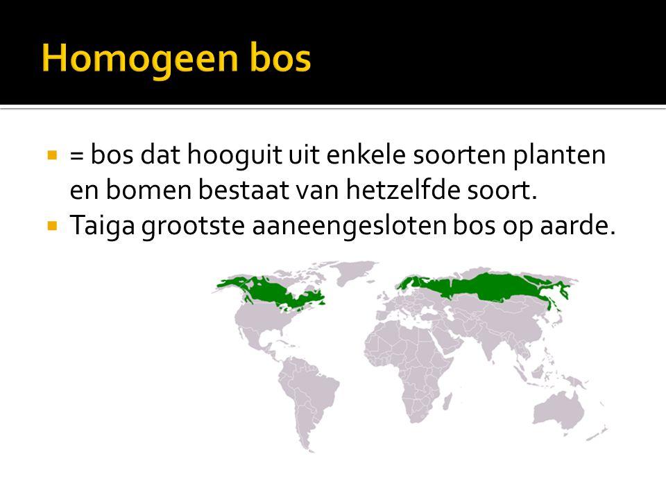  = bos dat hooguit uit enkele soorten planten en bomen bestaat van hetzelfde soort.