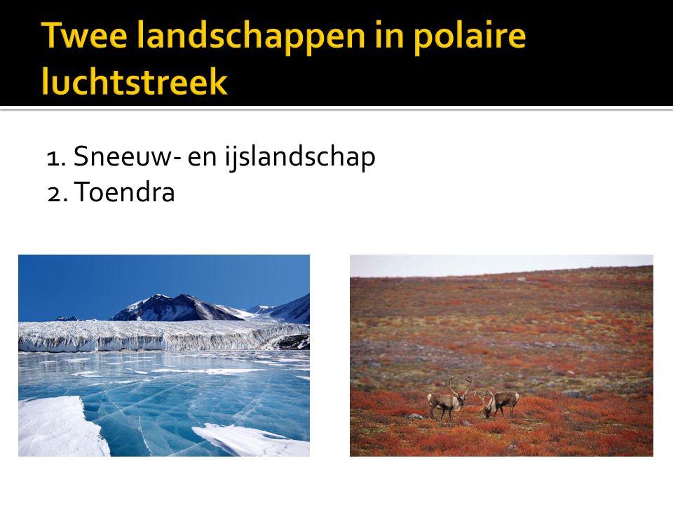 1. Sneeuw- en ijslandschap 2. Toendra