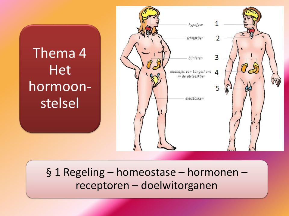 Hormoonstelsel: regulering functies Hormoonstelsel Chemische stoffen - moleculen Transport via bloedsomloop Specifieke organen reageren Langzame, langdurige processen Zenuwstelsel Elektrische impulsen Transport via zenuwen Verstuurd naar specifieke organen Snelle, kortdurende processen