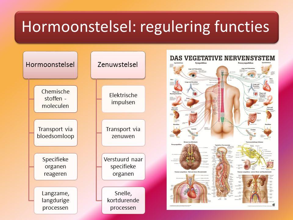 Hormoonklieren – andere klieren Hormoonklier: directe afgifte aan bloedvatVerschil met andere klieren: geen afvoerbuis