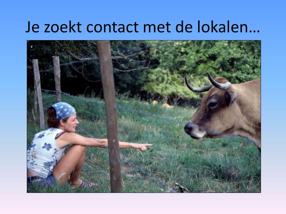 Je zoekt contact met de lokalen…