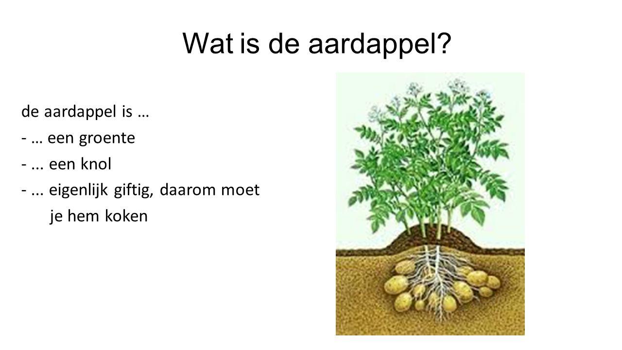 Wat is de aardappel.de aardappel is … - … een groente -...