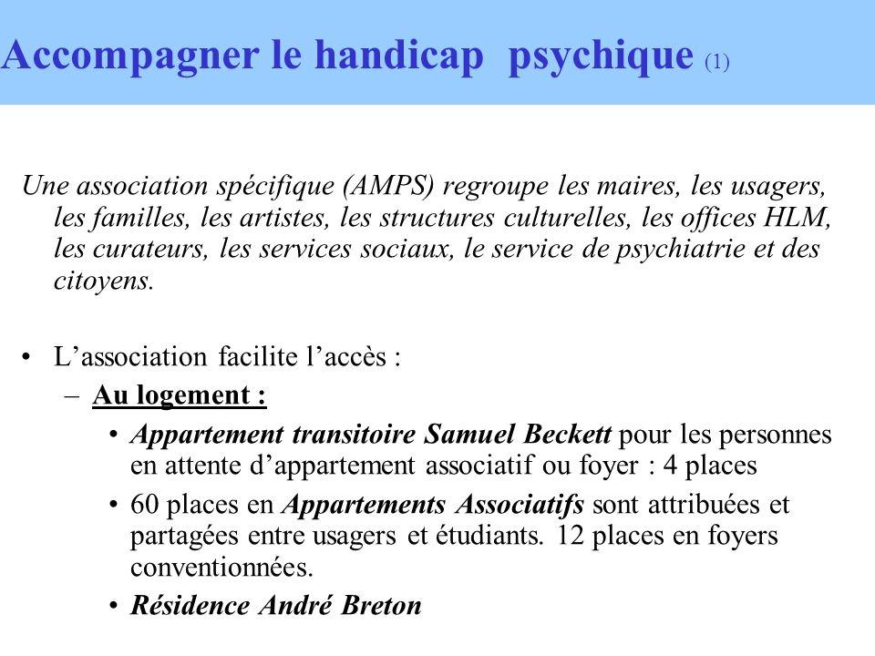 Accompagner le handicap psychique (1) Une association spécifique (AMPS) regroupe les maires, les usagers, les familles, les artistes, les structures culturelles, les offices HLM, les curateurs, les services sociaux, le service de psychiatrie et des citoyens.