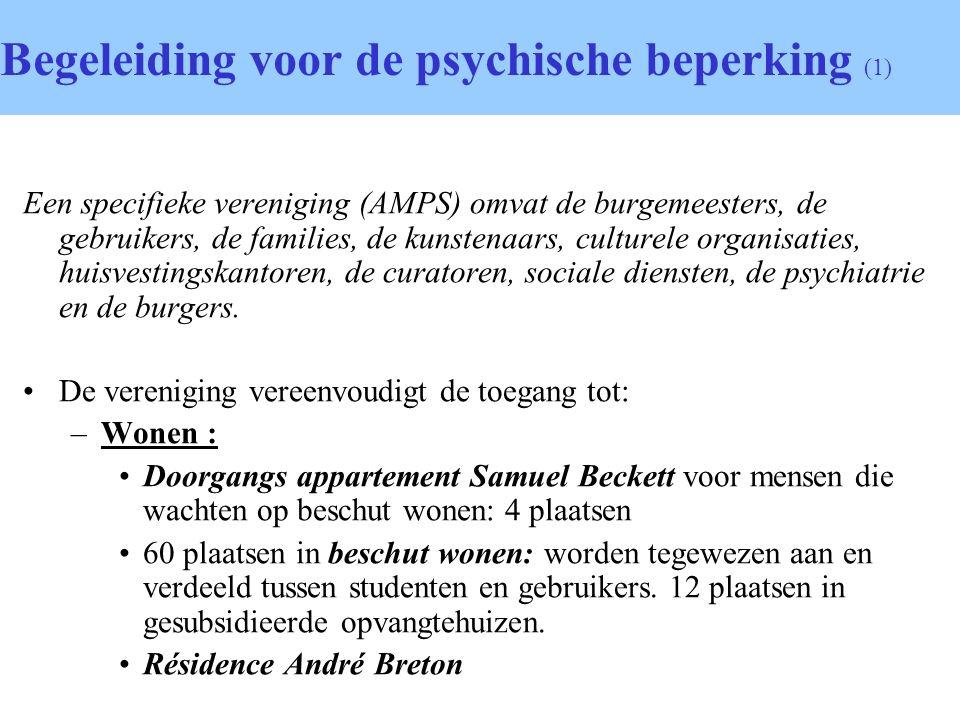Begeleiding voor de psychische beperking (1) Een specifieke vereniging (AMPS) omvat de burgemeesters, de gebruikers, de families, de kunstenaars, culturele organisaties, huisvestingskantoren, de curatoren, sociale diensten, de psychiatrie en de burgers.