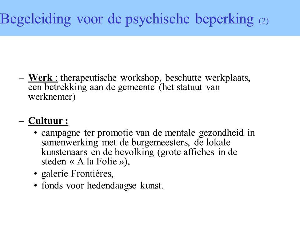 –Werk : therapeutische workshop, beschutte werkplaats, een betrekking aan de gemeente (het statuut van werknemer) –Cultuur : campagne ter promotie van