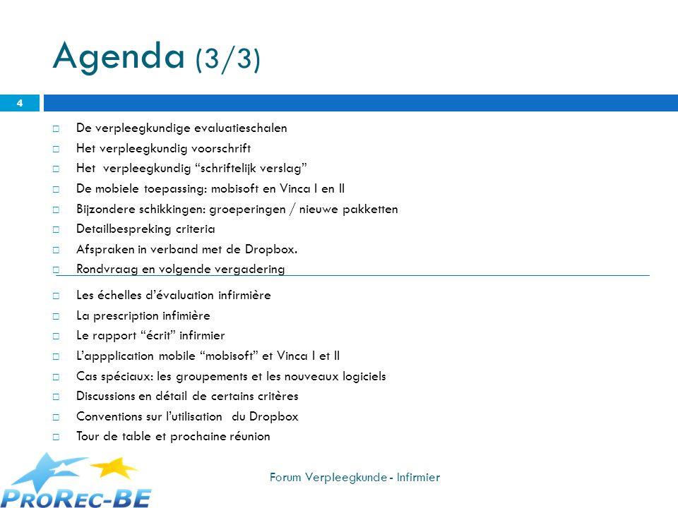 Agenda (2/2) De verpleegkundige evaluatieschalen Het verpleegkundig voorschrift Het verpleegkundig schriftelijk verslag Software Migration File : werkgroep opstarten, concrete afspraken Patient Migration File (onder voorbehoud) De mobiele toepassing: mobisoft Mogelijke kalender voor het label 2013 ProRec web site.