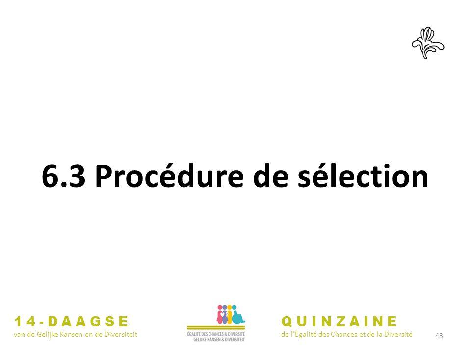 43 14-DAAGSE van de Gelijke Kansen en de Diversiteit QUINZAINE de lEgalité des Chances et de la Diversité 6.3 Procédure de sélection