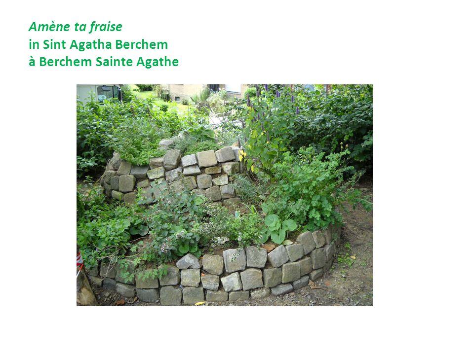 Amène ta fraise in Sint Agatha Berchem à Berchem Sainte Agathe