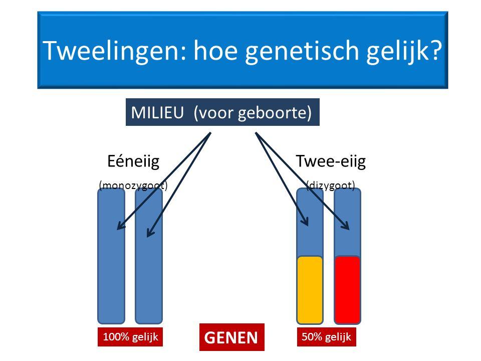 Tweelingen: hoe genetisch gelijk.