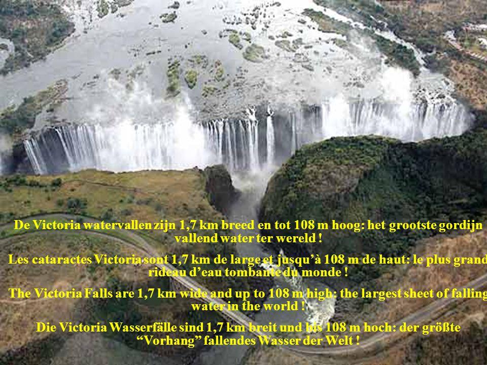 Bovenaanzicht van de Victoria watervallen. Vue aérienne des cataractes Victoria. Aerial top view of the Victoria falls. Aufsicht der Victoria Wasserfä