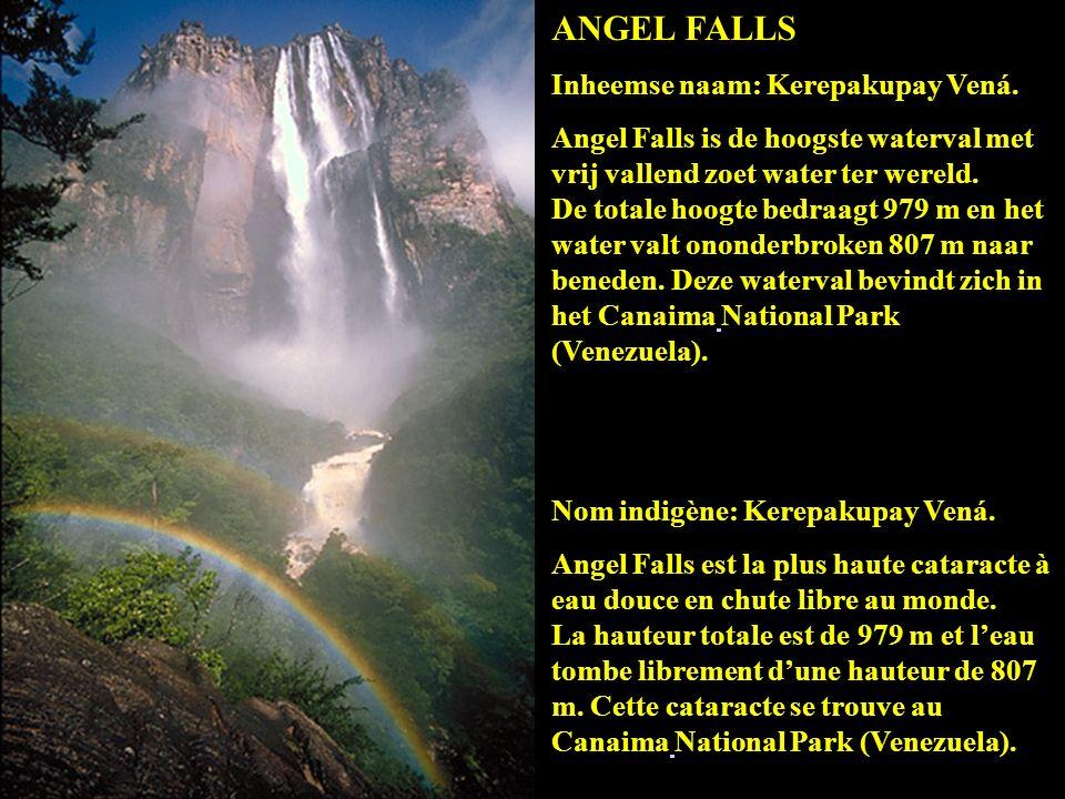 De Angel waterval in wolken gehuld. La cascade Angel dans les nuages. Angel Falls hiding behind the clouds. Der Wasserfall Angel in Wolken gehüllt.