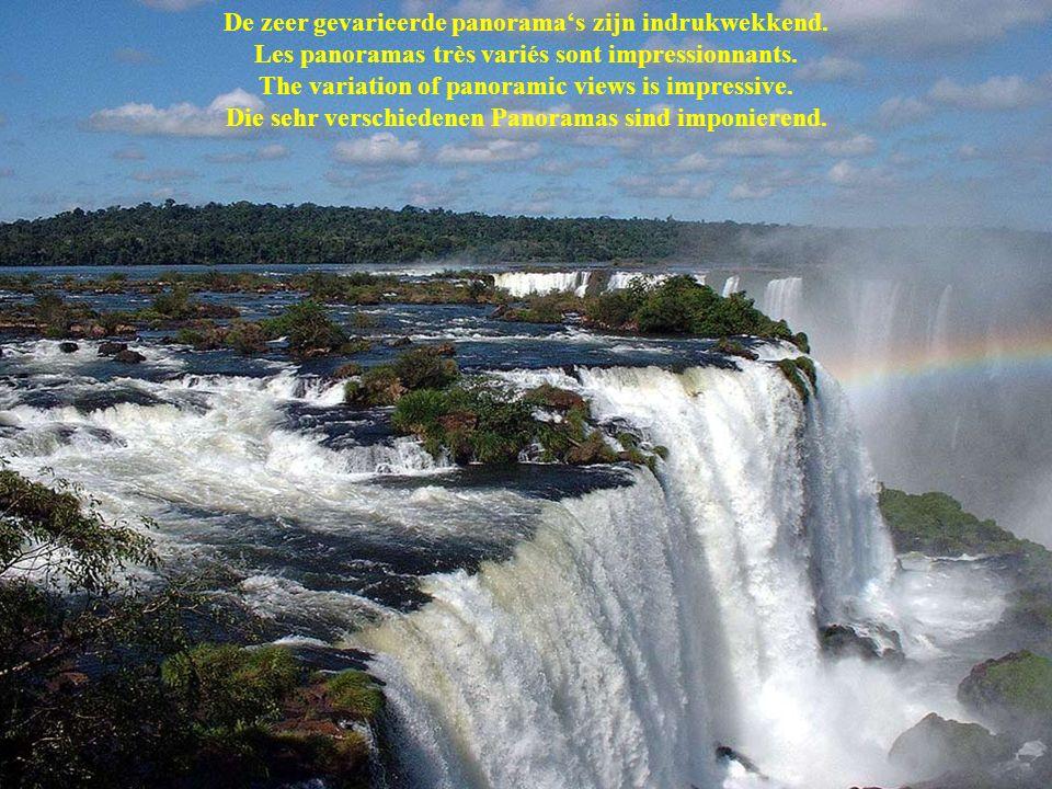 Panorama / Panoramic View Les cataractes Iguazu se situent à la frontière entre la province brésilienne Paraná et la province argentine Misiones De Ig