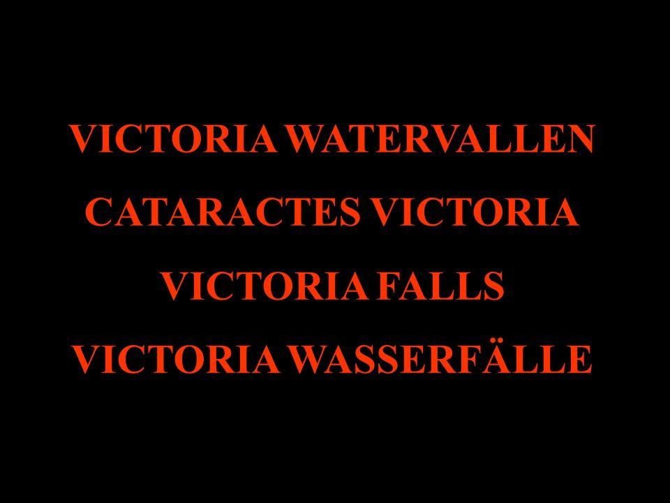 Maar u denkt ongetwijfeld niet aan de Victoria, Angel en Iguazu watervallen. Kijken we even waarom u daar wel aan zou moeten denken. Mais vous ne pens
