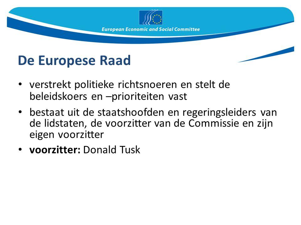 De Europese Raad verstrekt politieke richtsnoeren en stelt de beleidskoers en –prioriteiten vast bestaat uit de staatshoofden en regeringsleiders van de lidstaten, de voorzitter van de Commissie en zijn eigen voorzitter voorzitter: Donald Tusk