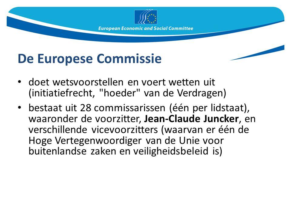 De Europese Commissie doet wetsvoorstellen en voert wetten uit (initiatiefrecht, hoeder van de Verdragen) bestaat uit 28 commissarissen (één per lidstaat), waaronder de voorzitter, Jean-Claude Juncker, en verschillende vicevoorzitters (waarvan er één de Hoge Vertegenwoordiger van de Unie voor buitenlandse zaken en veiligheidsbeleid is)