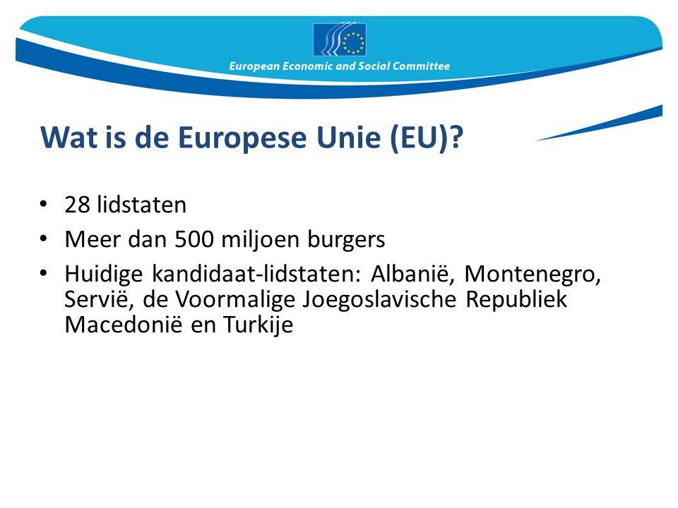 Een brug tussen de EU en het maatschappelijk middenveld Het EESC komt op voor de belangen van het maatschappelijk middenveld Het geeft maatschappelijke organisaties uit de lidstaten de mogelijkheid om hun stem te laten horen op Europees niveau