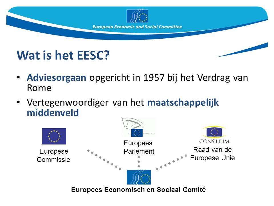 Wat is het EESC.