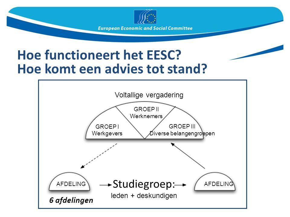 Hoe functioneert het EESC. Hoe komt een advies tot stand.