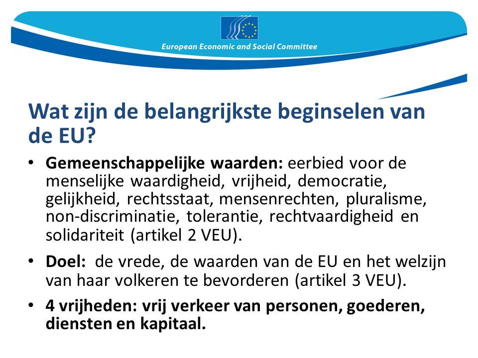 Het standpunt van het EESC De EU heeft een nieuw immigratie- en asielbeleid nodig waarin de verantwoordelijkheid meer wordt gedeeld.