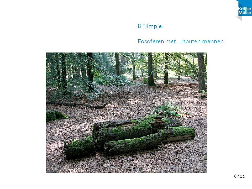 8 / 12 8 Filmpje: Fosoferen met… houten mannen
