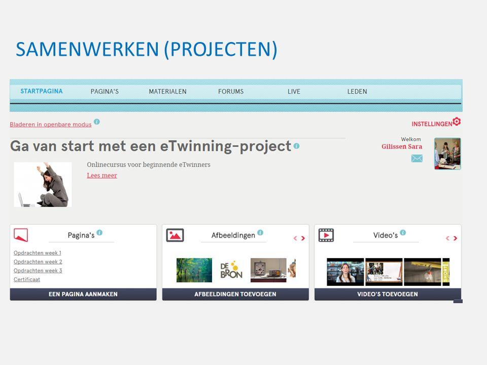 SAMENWERKEN (PROJECTEN) Samenwerking (projecten)