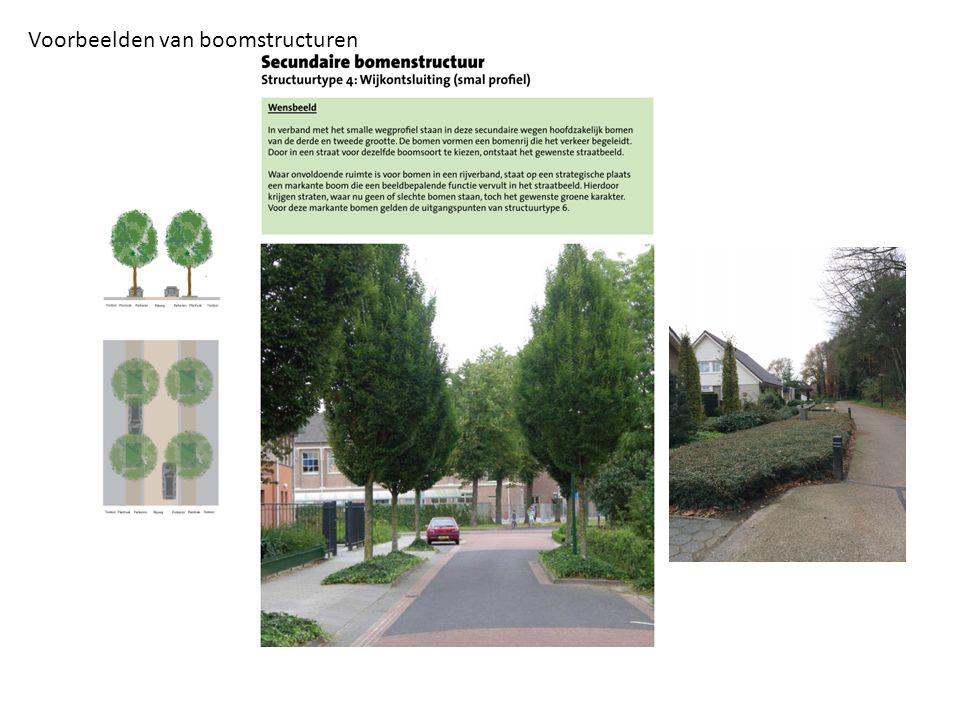Voorbeelden van boomstructuren