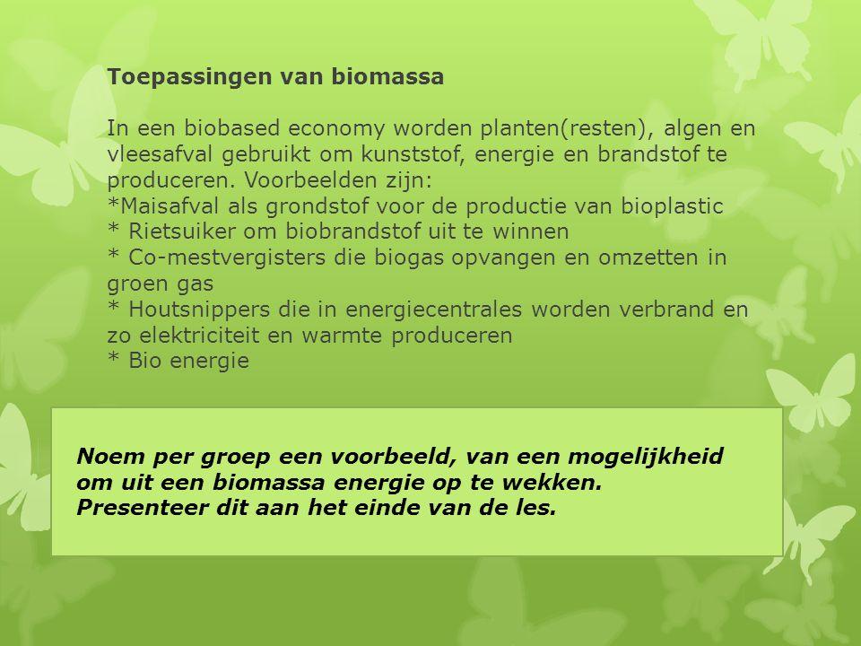Toepassingen van biomassa In een biobased economy worden planten(resten), algen en vleesafval gebruikt om kunststof, energie en brandstof te producere