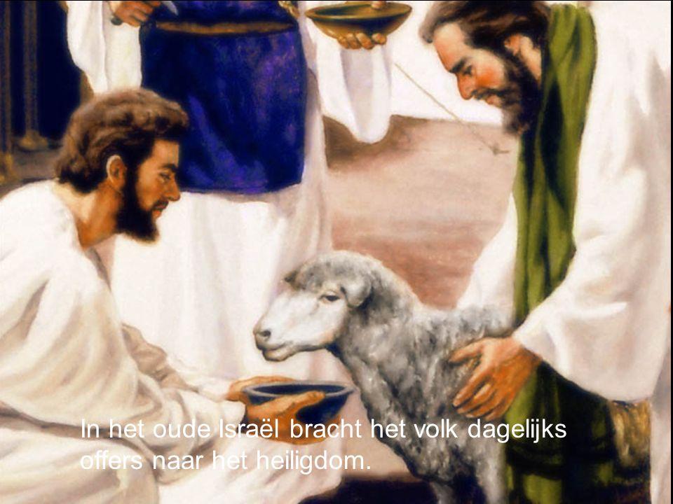 In het oude Israël bracht het volk dagelijks offers naar het heiligdom.