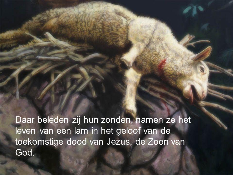 Daar beleden zij hun zonden, namen ze het leven van een lam in het geloof van de toekomstige dood van Jezus, de Zoon van God.