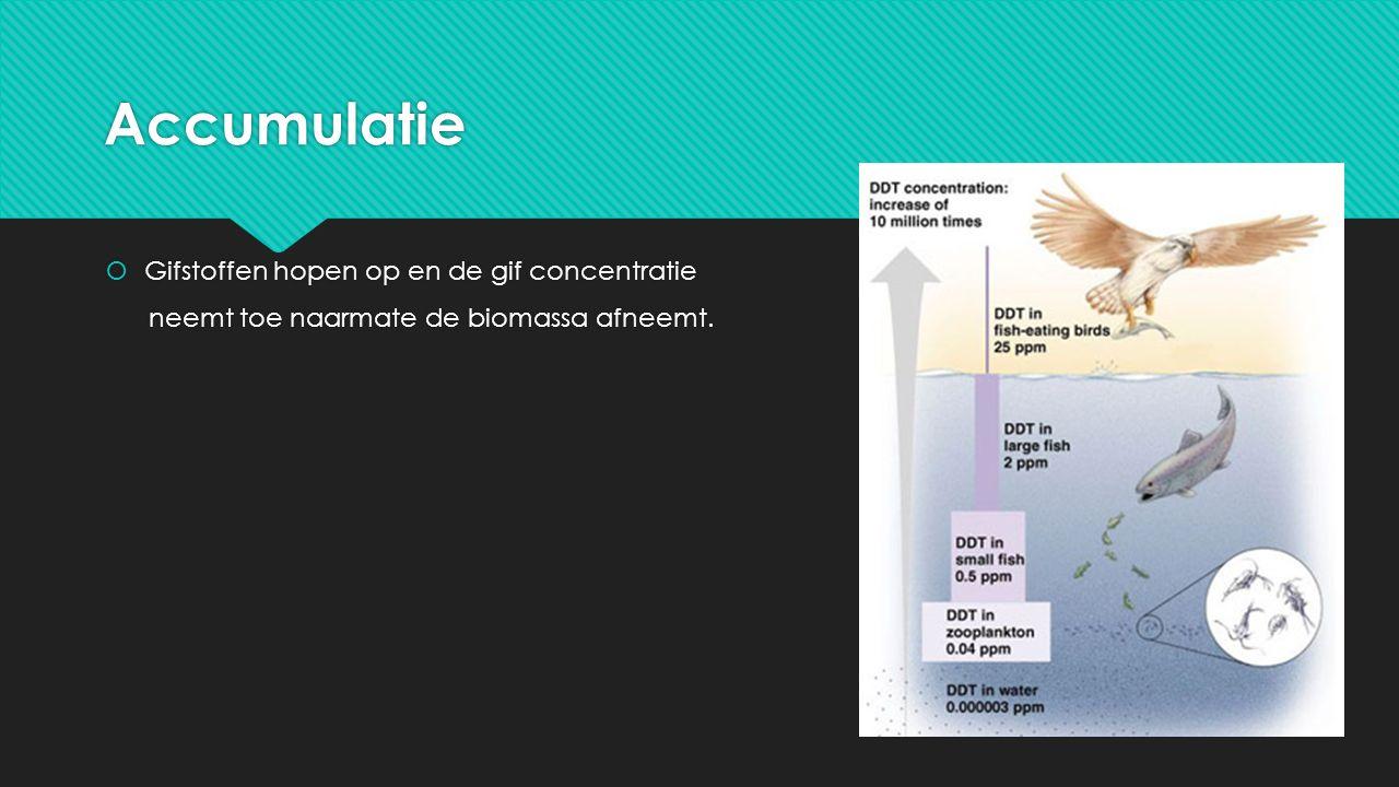 Accumulatie  Gifstoffen hopen op en de gif concentratie neemt toe naarmate de biomassa afneemt.  Gifstoffen hopen op en de gif concentratie neemt to
