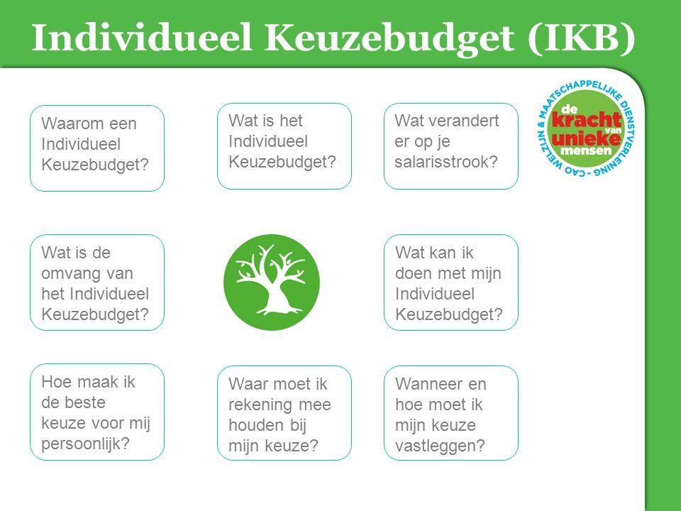 Individueel Keuzebudget (IKB) Wat is het Individueel Keuzebudget? Waarom een Individueel Keuzebudget? Wat verandert er op je salarisstrook? Hoe maak i