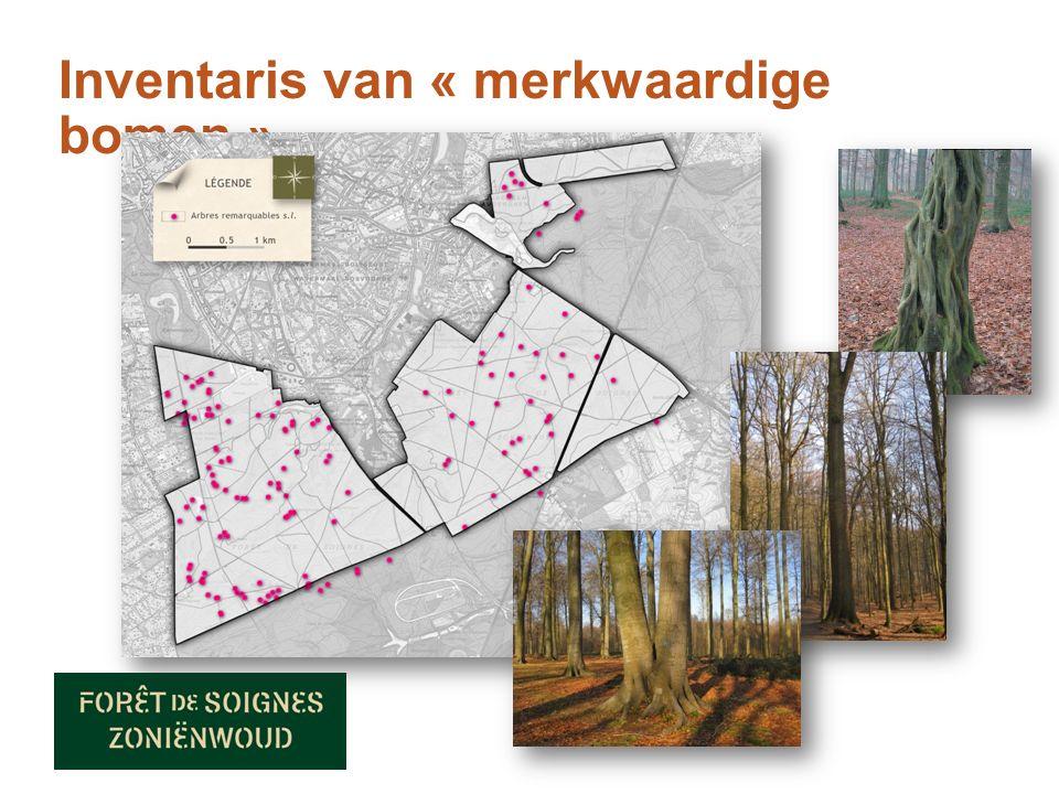 Inventaris van « merkwaardige bomen »