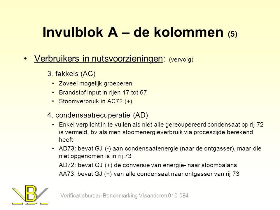 Invulblok A – de kolommen (5) Verbruikers in nutsvoorzieningen: (vervolg) 3.