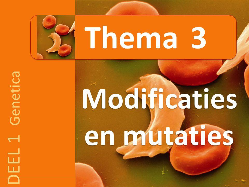 DEEL 1 Genetica Modificaties en mutaties Thema 3