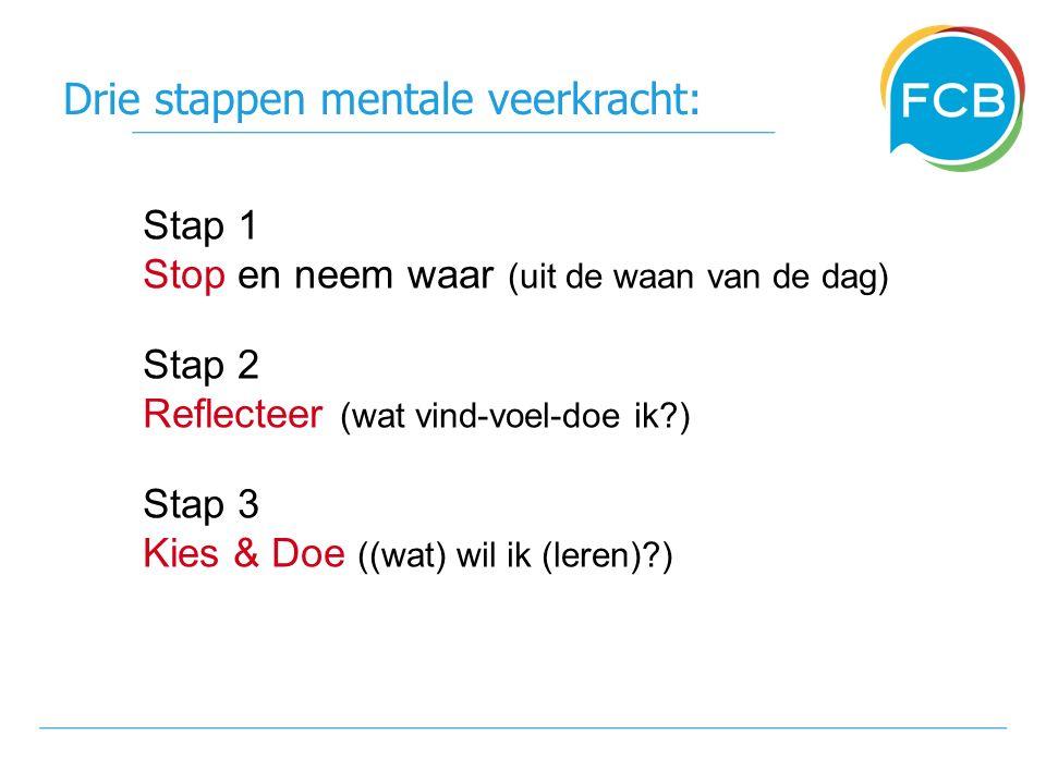 Drie stappen mentale veerkracht: Stap 1 Stop en neem waar (uit de waan van de dag) Stap 2 Reflecteer (wat vind-voel-doe ik ) Stap 3 Kies & Doe ((wat) wil ik (leren) )