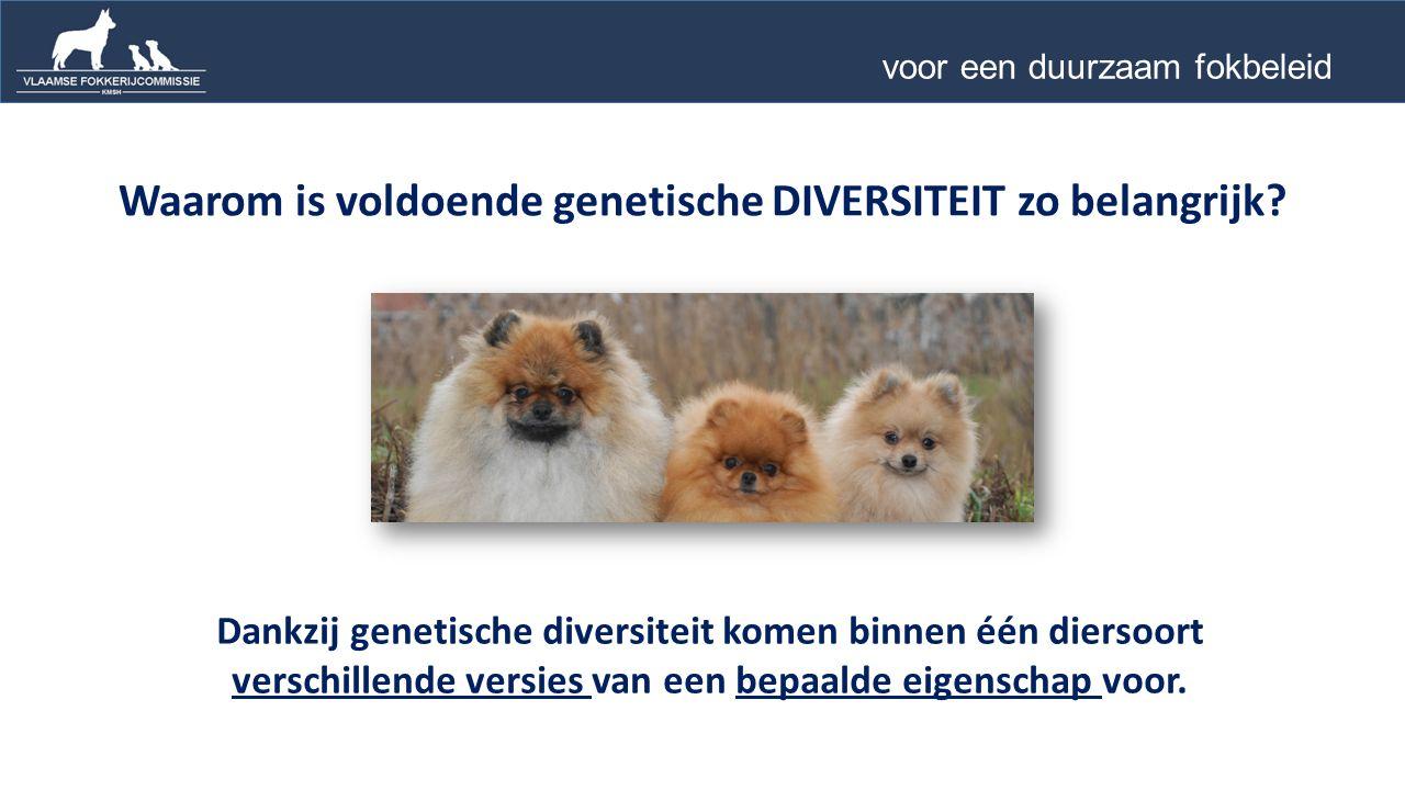 Waarom is voldoende genetische DIVERSITEIT zo belangrijk.