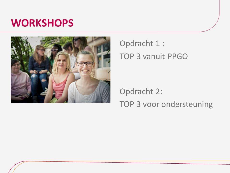 WORKSHOPS Opdracht 1 : TOP 3 vanuit PPGO Opdracht 2: TOP 3 voor ondersteuning