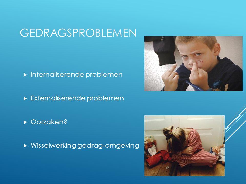 GEDRAGSPROBLEMEN  Internaliserende problemen  Externaliserende problemen  Oorzaken.