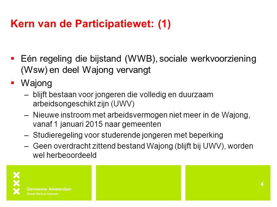 Kern van de Participatiewet: (1)  Eén regeling die bijstand (WWB), sociale werkvoorziening (Wsw) en deel Wajong vervangt  Wajong –blijft bestaan voo