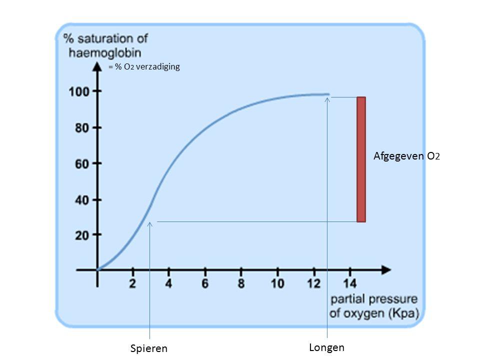 Spieren Longen Afgegeven O 2 = % O 2 verzadiging