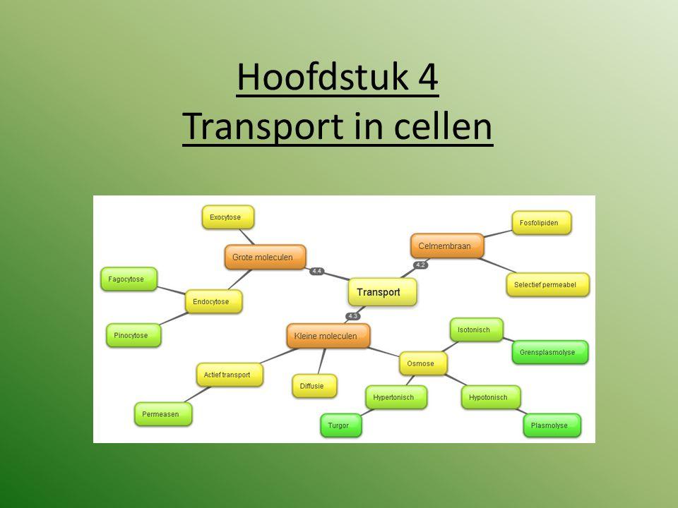 Toets inhoud periode 3.1 Hoofdstuk 4: Biologie voor het MLO Transport in cellen (geheel) Praktijk: Kunstmatige cel.